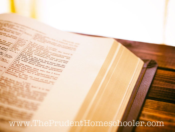When the baby is screaming, the toddler is whining, and your kindergartener won't stop nagging, it is easy to want to quit. You NEED these verses NOW! Commit them to memory for those parenting days when you want to throw your hands up and scream! | The Prudent Homeschooler
