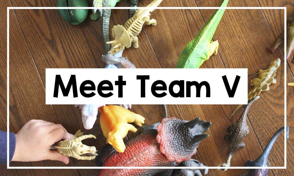 Team V Education - Meet Team V